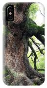 Kyoto Temple Tree IPhone Case