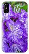 Lackamas Blue IPhone Case