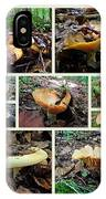Lactarius Torminosus - Yellow Mushrooms IPhone Case
