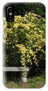Lady Banksia Rose IPhone Case