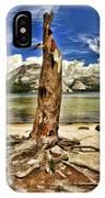 Lake Tenaya Giant Stump IPhone Case