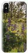 Land Of The Lupines IPhone Case