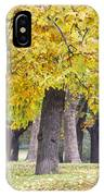 Landscape With Autumn Trees IPhone Case