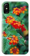 Lantana Delight IPhone Case