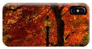 Lantern In Autumn IPhone X Case
