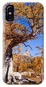 Larch Tree Frames Prusik Peak IPhone Case