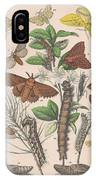 Lasiocampa IPhone Case