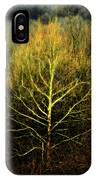 Last Breath Of Fall IPhone Case