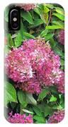 Late Hydrangea Flower IPhone Case