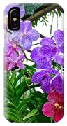 Lavender And Red Orchids At Maerim Orchid Farm In Chiang Mai-tha IPhone Case