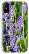 Lavender Dream IPhone Case