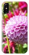 Lavender Purple Dahlia Flowers Art Prints IPhone Case