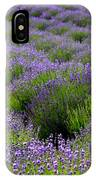 Lavender Rows IPhone Case