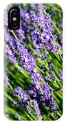 Lavender Square IPhone Case
