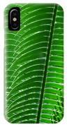 Layered Ferns I IPhone Case