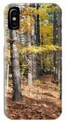 Leading To Autumn IPhone Case