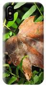 Leaf Among Ferns IPhone Case