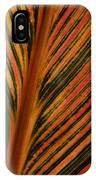 Cannas Plant Leaf Closeup IPhone Case