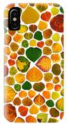 Leaf Collage 2 IPhone Case