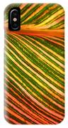 Leafscape 2 IPhone Case