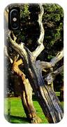 Leaning Cedars Of West Chop IPhone Case
