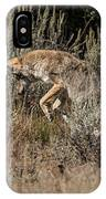 Leaping Coyote IPhone Case
