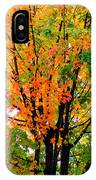 Leaves Changing Colors IPhone Case