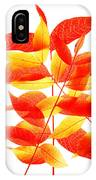 Leaves In Fall IPhone Case