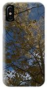 Leaves In The Sky IPhone Case