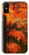 Leaves Over Water IPhone X Case