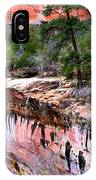 Ledge At Emerald Pools In Zion National Park IPhone Case