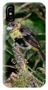 Lemon-rumped Tanager Molting IPhone Case
