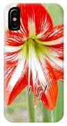 Lensbaby 2 Orange Red And White Amaryllis Blooms IPhone Case