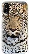 Wild Leopard In Botswana IPhone Case