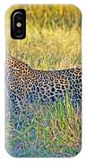 Leopard On The Prowl IPhone Case