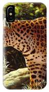 Leopard Painting - On The Prowl IPhone X Case