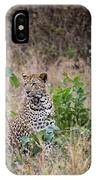 Leopard Sits IPhone Case