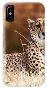 Leopard Watching IPhone Case