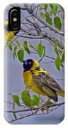 Lesser Masked Weaver IPhone Case