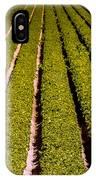 Lettuce Farming IPhone Case