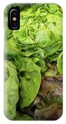 Lettuce Go Forward IPhone Case