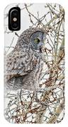 Levitating Great Grey Ghost IPhone Case