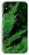 Leyland Cypress Green IPhone Case