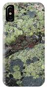 Lichen And Granite Img 6187 IPhone Case