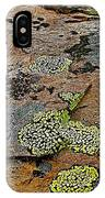 Lichens Along Trail To Plain Of Six Glaciers In Banff National Park-alberta-canada IPhone Case