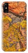 Lichens On The Shoreline Rocks 2 IPhone Case