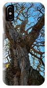 Life Of A Tree IPhone Case