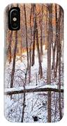 Light In The Valley IPhone Case