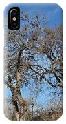 Light Posts And Trees IPhone Case