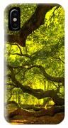 Lighter Version 40x40 IPhone Case